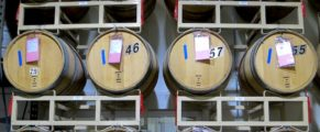 Barrels of Chilean Wines at The Wine Press