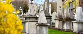 Grove Street Cemetery in springtime