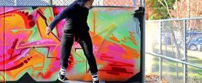 Skater in Edgewood Skatepark (2014)